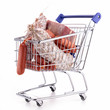 shopping cart with meat