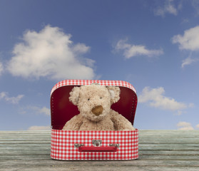 teddy bear in a vintage carton suitcase, blue sky with clouds