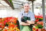 Smiling man in the greenhouse in garden center