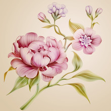 "Постер, картина, фотообои ""vintage peony spring flowers and leaves isolated"""