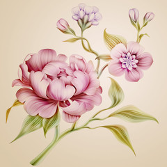 vintage peony spring flowers and leaves isolated