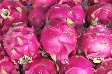 Dragon Fruit Closeup Background