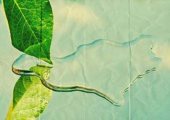 leaf water paper