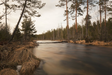 Early spring creek in Sweden