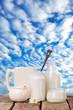 lactosefreie Milchprodukte