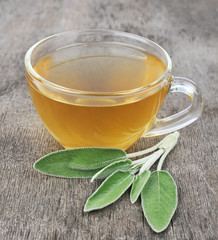 sage leaves and sage tea
