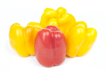 Group of some yellow and one red pepper