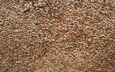 Linseed, Lin seeds background