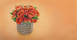 Bouquet of orange roses with copy space