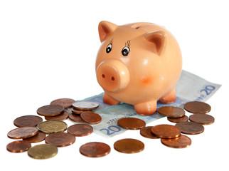 Piggy bank on twenty euro note