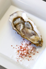 Huître, fruit de mer, crustacé, Arcachon, iodé, gastronomie