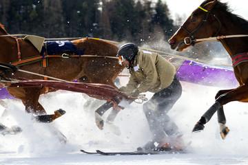 skier vs. horses