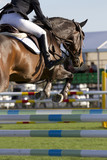 Horse jump a hurdle in a competition/Equestrian jumper