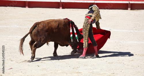 Staande foto Stierenvechten solo de Jose Tomas, Nimes 2012