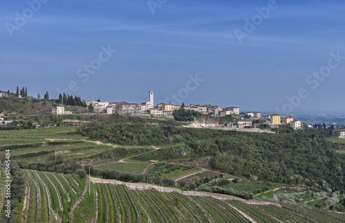 Panoramic view of San Giorgio Valpolicella