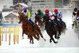 corsa ippica invernale - 51546219