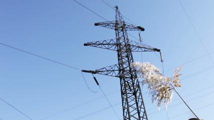 Mast lines.