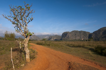 Red earth road and cuban mogotes, Vinales, Cuba