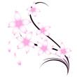 fiori ciliegio tattoo