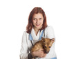 charming young woman veterinarian holding a puppy red