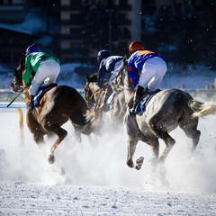 ippodromo di Sankt Moritz (CH)