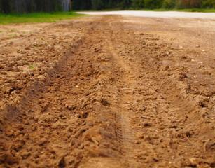 Impronte nel fango