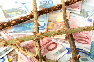 euro money banknote with rose thorns