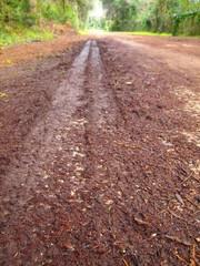 Strada fangosa dopo la pioggia