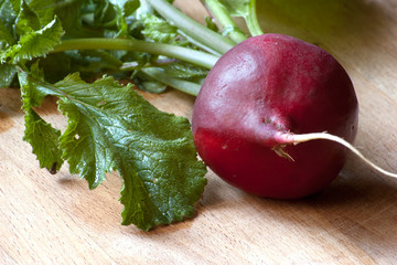 isolated fresh radish with leaves