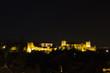 Magic Alhambra by night.
