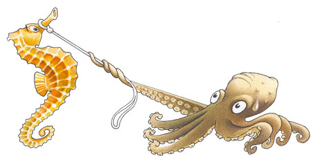 The octopus has caught sea-horse with the help lasso