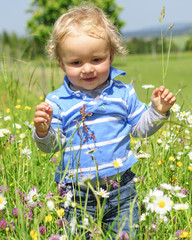 Junge erforscht die Natur