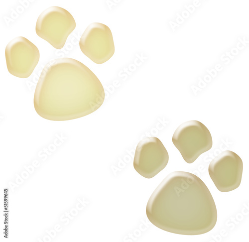 3d white paw prints illustration