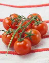 Cherry tomatoes - Pomodorini ciliegieno