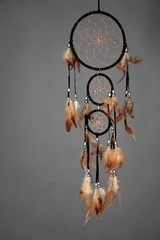 Beautiful dream catcher on grey background