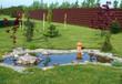 Garden pond - 51608471