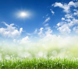 sky , grass, © Vitaly Krivosheev