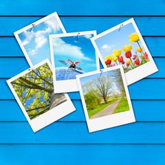 Endlich Frühling!, Schnappschüsse, Pinwand, Sofortbild