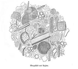 Mergel (Alte Lithographie)