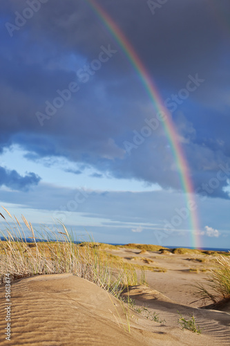 rainbow in the sky, by the sea