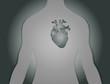 Herz Torso Hintergrund Silber Vector