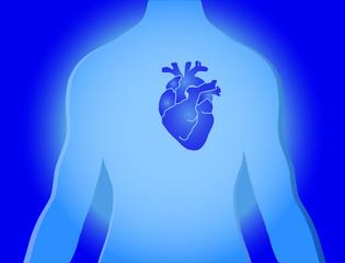 Torso mit Herz Hintergrund Vector