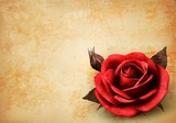 Retro background with beautiful red rose with buds. Vector illus