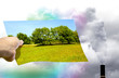 scegliere tra natura pulita o inquinamento