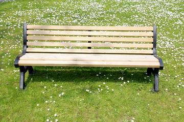 panchina su prato fiorito