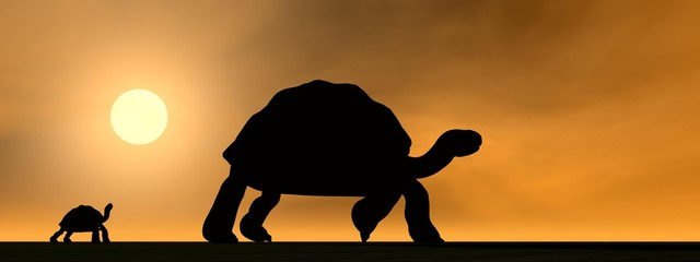 Galapagos tortoises mum and child - 3D render