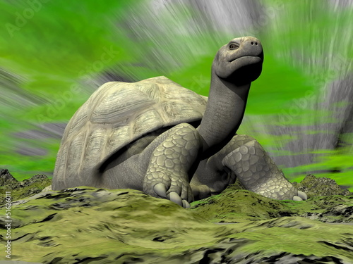 Galapagos tortoise looking at you - 3D render