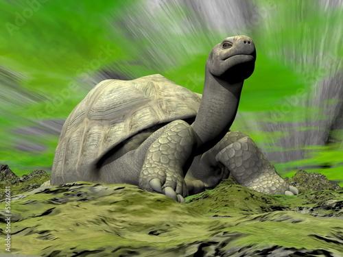Galapagos tortoise looking at you - 3D render