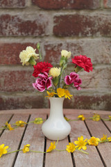 Carnations and celandines in white vase on garden table