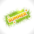 word summer with fresh green grass